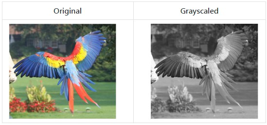 Various color matrix based image filters for iOS & Android