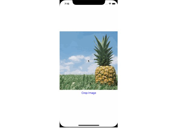 React Native Simple Image Cropper